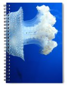 Beauty In The Blue Spiral Notebook