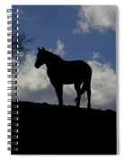 Beauty In The Wind Spiral Notebook