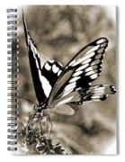 Beauty Simplified Spiral Notebook