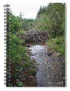 Beaver Dam Spiral Notebook