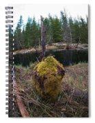 Beaver Marks Spiral Notebook