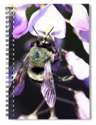 Bee And Blooms - Card Spiral Notebook