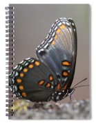 Bee And Me Spiral Notebook