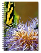 Bee And The Butterfly Spiral Notebook