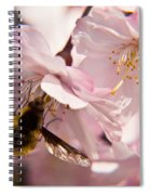 Bee Fly Feeding 6 Spiral Notebook