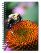 Bee-ing Happy Spiral Notebook