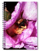 Bee There Spiral Notebook