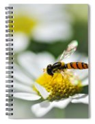 Bee With Rainbow Wings Spiral Notebook
