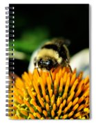 Beeing Healthy With Echinacea Pow Wow Spiral Notebook