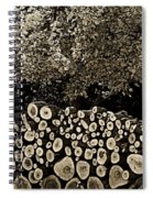Before And After Spiral Notebook