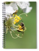 Being A Bee Spiral Notebook