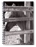Being Cautious Spiral Notebook