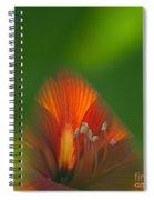 Belladonna Lily Closeup Spiral Notebook