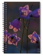Bellflower Spiral Notebook