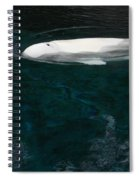 Beluga Impressions 2 Spiral Notebook