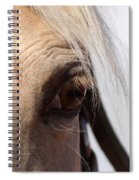 Benson Mule Days Spiral Notebook