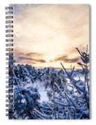 Bergen Winter Spiral Notebook