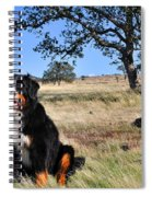 Bernese Mountain Dog In California Chaparral Spiral Notebook