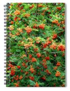 Berries In Profusion Spiral Notebook