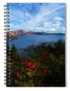Berries On The Crater Spiral Notebook