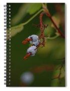 Berry Spiral Notebook