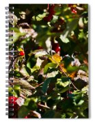 Berry Picking Spiral Notebook