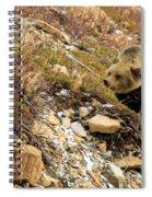 Berry Sniffer Spiral Notebook