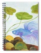 Blue Betta 1 Spiral Notebook