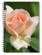 Betty White Rose Spiral Notebook