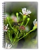 Between Jobs Vignette Spiral Notebook
