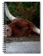 Beware Smiling Bull Spiral Notebook