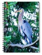 Big Bird - Great Blue Heron Spiral Notebook