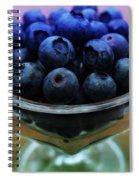 Big Bowl Of Blueberries Spiral Notebook