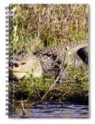 Big Boy Spiral Notebook
