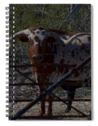 Big Bull Long Horn Spiral Notebook