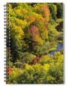 Big Carp River 3 Spiral Notebook