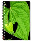 Big Heart Little Heart Spiral Notebook