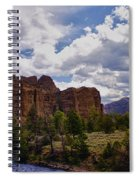 Big Horn National Forest Spiral Notebook