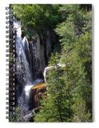 Big Horn National Forest Spiral Notebook