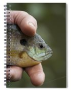 Big Man Hand - Little Crappie Spiral Notebook