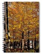 Big Orange Spiral Notebook