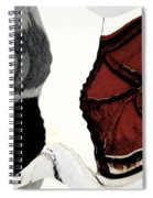 Big Red Door With Painted Fence Spiral Notebook