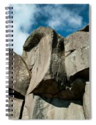 Big Rock Ear Spiral Notebook