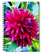 Red Smile Spiral Notebook