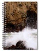 Big Sur 1 Spiral Notebook