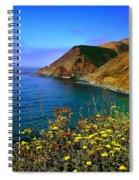 Big Sur I Spiral Notebook