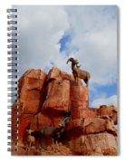 Big Thunder Bighorns Spiral Notebook