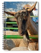 Billy The Ham Spiral Notebook