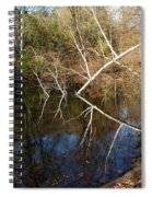 Birch Eye Spiral Notebook