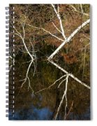 Birch Lake Reflections Spiral Notebook